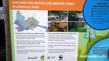 Rivitalized Bronte Creek in Lowville Park