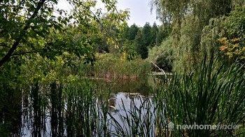 Terra Cotta Pond