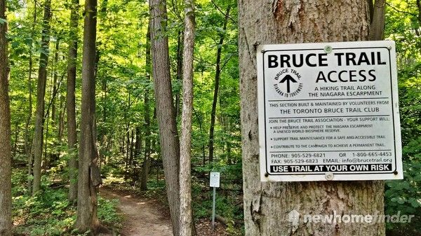 Bruce Trail runs through Silver Creek Conservation Area