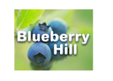 Blueberry Hill new home development by Fusion Homes in Guelph