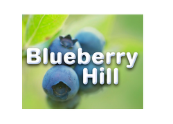 Blueberry Hill new home development by Fusion Homes in Guelph, Ontario